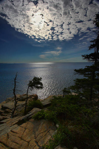Photograph - Soft Light On Otter Point by Neil Shapiro