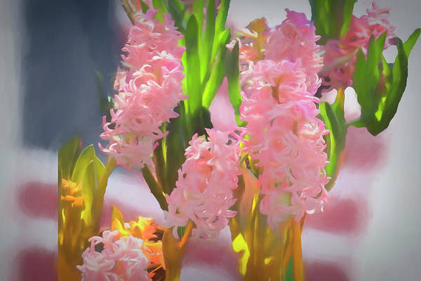 Digital Art - Soft Pink Hyacinths. by Rusty R Smith