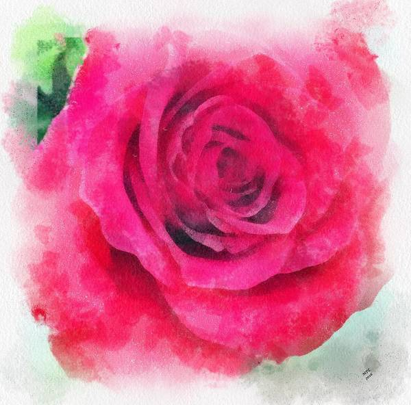 Painting - Soft Red Rose by Marian Palucci-Lonzetta