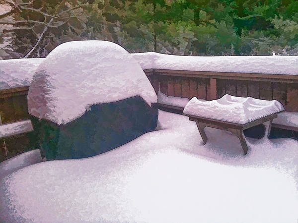 Photograph - Soft Snow On The Deck by Richard Goldman