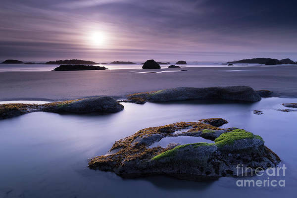 Low Tides Photograph - Soft Sunset by Masako Metz