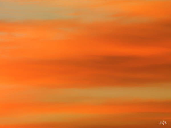 Photograph - Soft Warm And Colorful by Leland D Howard