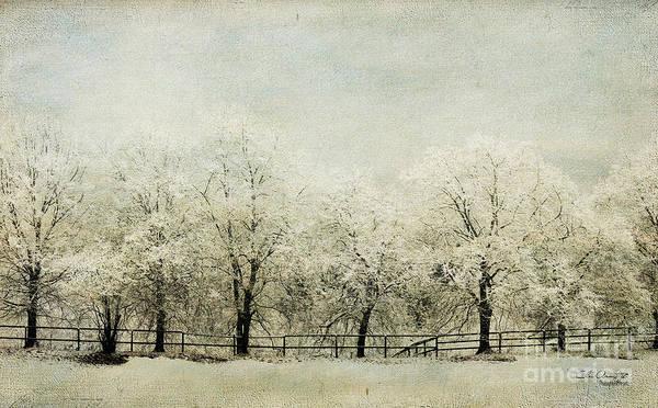 Snow Fence Digital Art - Softly Falling Snow by Chris Armytage