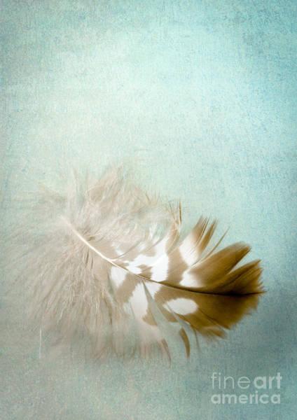 Aqua Digital Art - Softly by Jan Bickerton