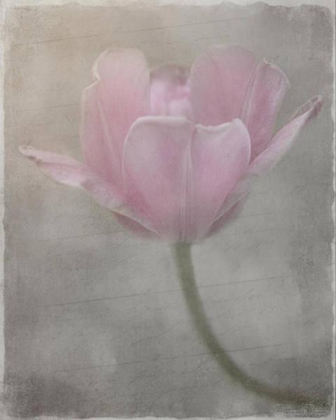 Mixed Media - Softly She Whispers by Teresa Wilson