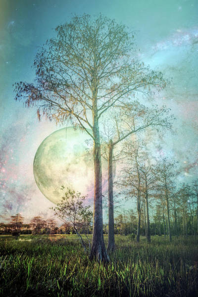 Photograph - Softly The Moon Sets by Debra and Dave Vanderlaan