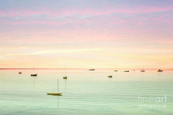 Cape Cod Sunset Photograph - Softness And Light by Evelina Kremsdorf