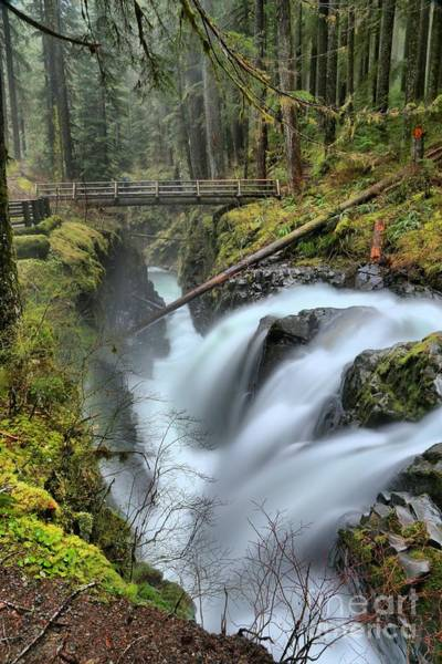Photograph - Sol Duc And The Bridge by Adam Jewell
