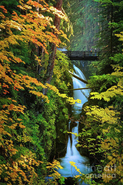 Washington County Wall Art - Photograph - Sol Duc Falls In Autumn by Inge Johnsson