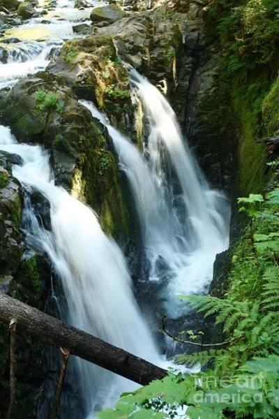 Triple Falls Photograph - Sol Duc Falls by Idaho Scenic Images Linda Lantzy