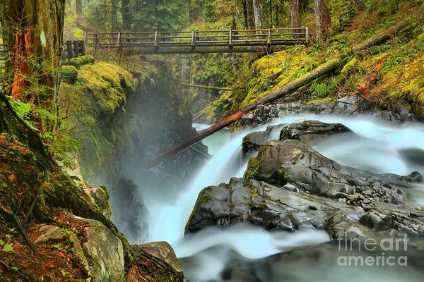 Photograph - Sol Duc Waterfall Canyon by Adam Jewell