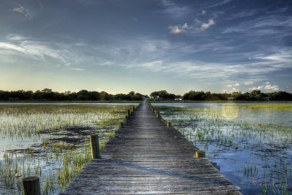 Marsh Grass Photograph - Sol Legare Dock Charleston Sc by Dustin K Ryan