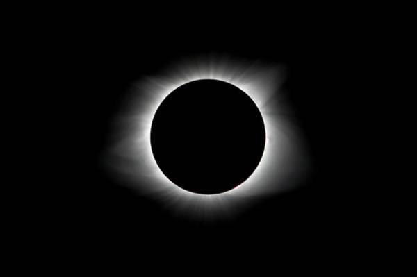Photograph - Solar Eclipse Ring Of Fire by Lori Coleman