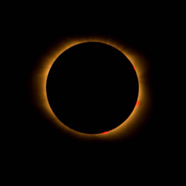 Photograph - Solar Eclipse-totality by Bradford Martin