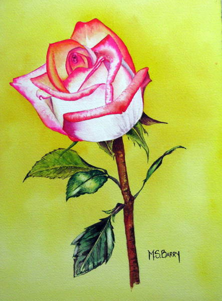 Single Rose Painting - Solitaire by Maria Barry