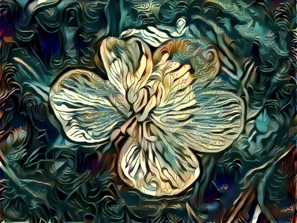 Digital Art - Solitary by Amanda Moore
