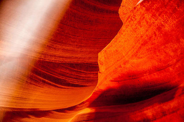 Antelope Photograph - Solitary Beam by Az Jackson