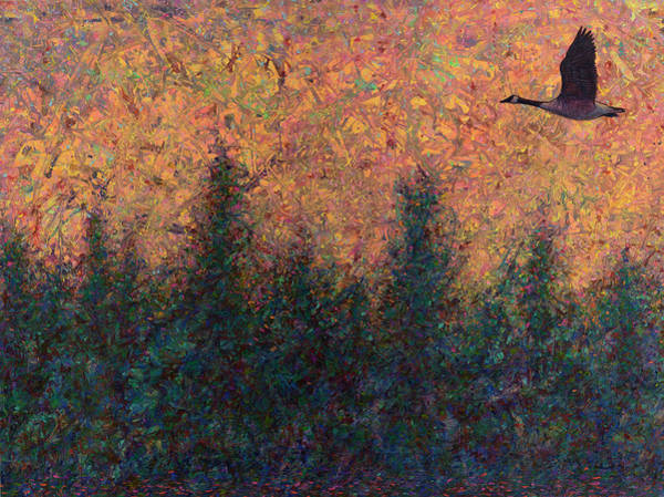 Wall Art - Painting - Solitary Goose by James W Johnson