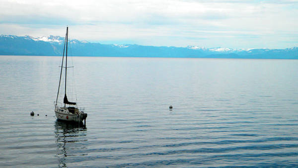 Photograph - Solitary Sailboat by Frank Wilson