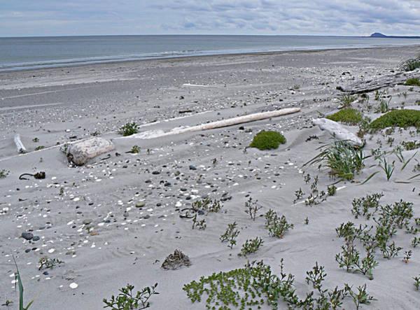 Photograph - Solitary Shores Haida Gwaii Bc by Barbara St Jean
