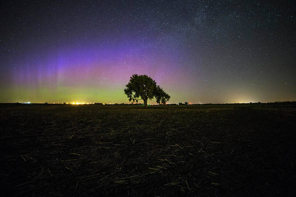 Southeastern Photograph - Solitude by Aaron J Groen