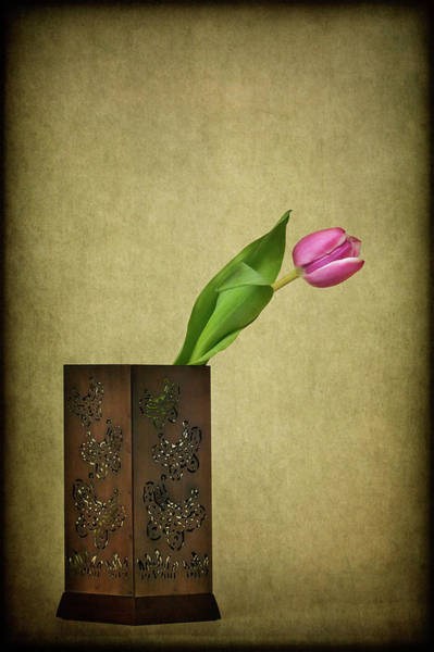 Wall Art - Photograph - Solitude In Bloom by Evelina Kremsdorf