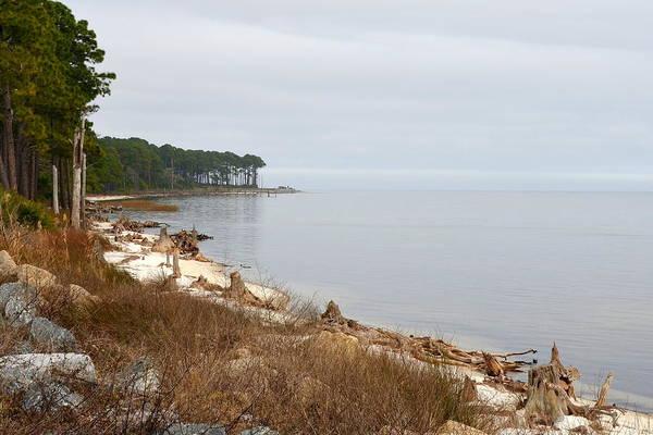 Wall Art - Photograph - Solitude On The Florida Gullf Coast by Carla Parris