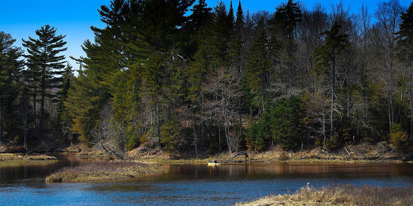 Photograph - Solitude On The Moose River by David Patterson