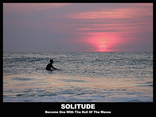 Photograph - Solitude by Robert Banach