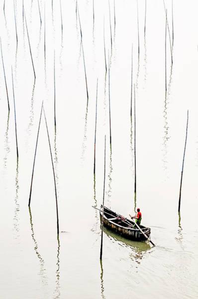Photograph - Solitude by Usha Peddamatham