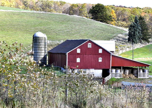 Somerset County Photograph - Somerset County Farm by Penny Neimiller