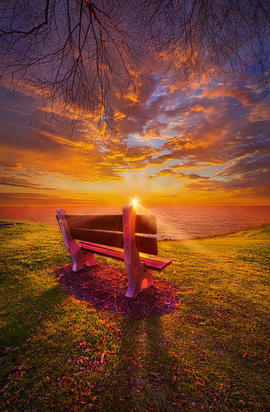 Photograph - Sometimes I Feel Like A Sad Song by Phil Koch