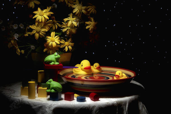 Ducks Photograph - Sometimes Late At Night by Tom Mc Nemar