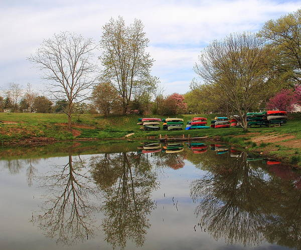 Photograph - Sometimes On A Lake by Allen Nice-Webb