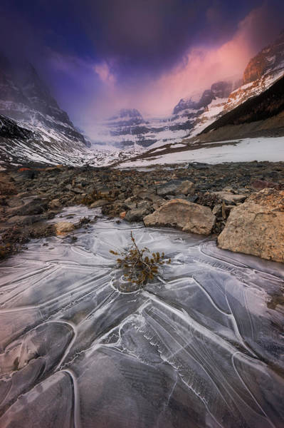 Canadian Rockies Wall Art - Photograph - Somewhere In The Canadian Rockies by Dan Jurak