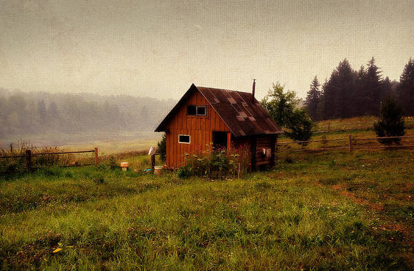 Somewhere In The Countryside. Russia Art Print