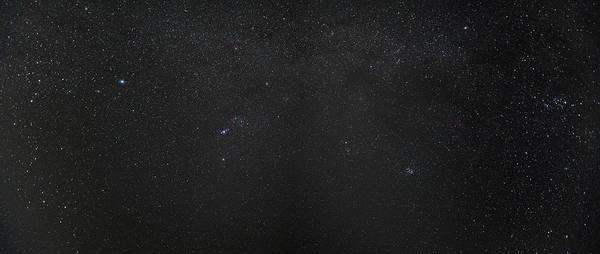 Wall Art - Photograph - Sonaran Desert Stars by Steve Gadomski
