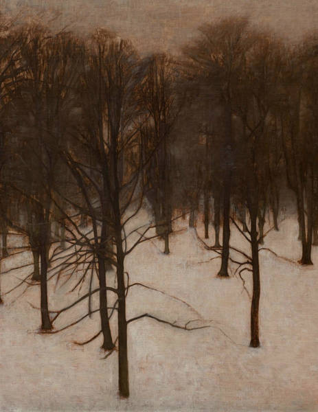 Painting - Sondermarken Park In Winter by Vilhelm Hammershoi