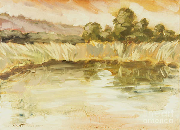 Painting - Sonoma Pond Ca by Gordon Punt