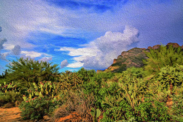 Photograph - Sonoran Afternoon Op12 by Mark Myhaver
