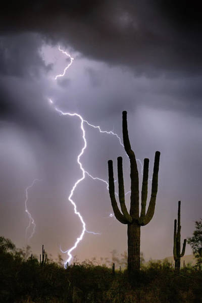 Photograph - Sonoran Desert Monsoon Storming by James BO Insogna