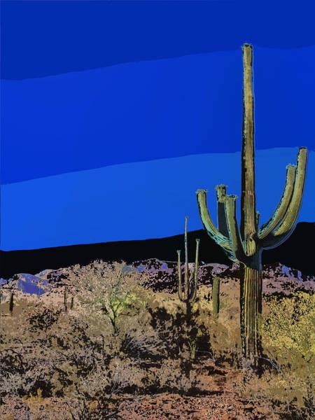 Photograph - Sonoran Desert Moonlight by Dominic Piperata