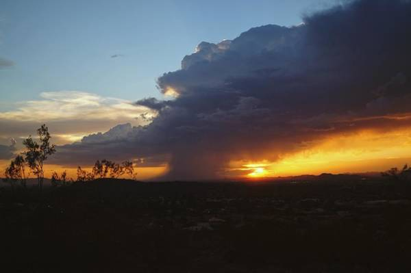 Photograph - Sonoran Desert Thunderstorm by Broderick Delaney