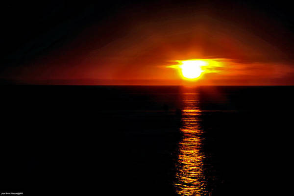 Photograph - Sonoran Sun by Joseph Noonan