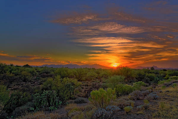 Photograph - Sonoran Sunset H44 by Mark Myhaver