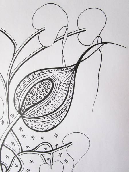 Drawing - Soon To Burst by Rosita Larsson