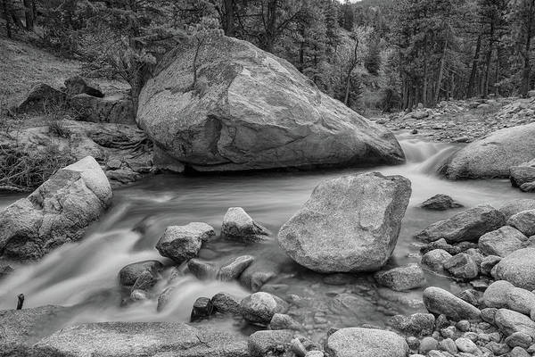 Photograph - Soothing Colorado Monochrome Wilderness by James BO Insogna