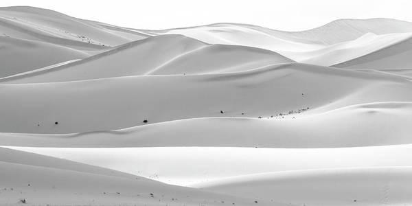 Photograph - Soothing Desert by Hitendra SINKAR
