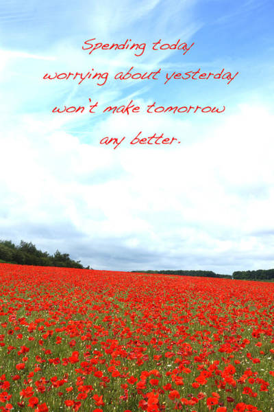 Photograph - Soothing Poppies by David Birchall