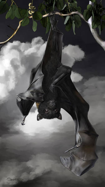 Samantha Painting - Sophia - Flying Fox by Samantha Tro